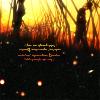 Worlds Apart (Sasuke + Naruto)