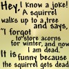 Dug- squirrel gets dead