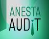 anesta_audit userpic