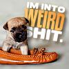 comedy | I'm Into Weird Shit