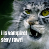 twilight lolcat