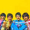 Sonja Kasaburankasu: The Beatles