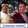 Cetacean needed