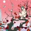 cherry blossom bondage