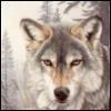 a_v_volkov userpic