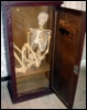 skeletizshkafa userpic