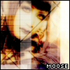 moooooose userpic