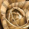 romance - musical rose: fatbird33