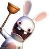 кролик crazy