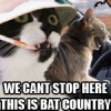 Bat Country!