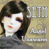BJD: Seth- Angel Unawares