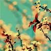 vitasana userpic