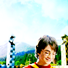 hp; bb harry; quidditch