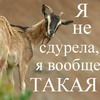 krimgilda userpic
