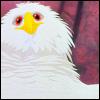 Birdy: *POOF*