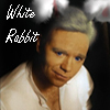 Horatio - White Rabbit