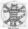 estrela190: кот да Винчи