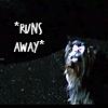 annj_g80: runs away