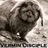 Vermin Disciple