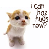 I can haz hugs?