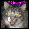 Gasp! - Mouse The Cat