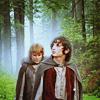 LotR Frodo and Sam crossroads