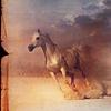 Sabi: {Stock} Horse