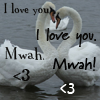 ennui_blue_lite: Random - Swan love goodbye