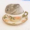 Maz (or foxxy!): Nice cup of bunny