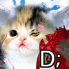 Cupid Fwee Cat