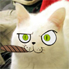 кот с сигарой