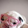 Elisa: Glasses