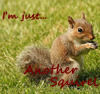 anothersquirrel userpic