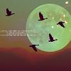 embrace_hope userpic