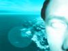 johnny_ocean