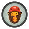 лого, Стенолазы