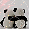 Amanada (rhymes with Canada): i got your back pandas