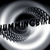 hummingbirdc userpic