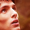 Merlin awe