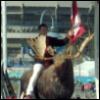 Colbert: Ride the moose!
