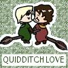 H/D: Quidditch love