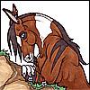 rantingmule userpic
