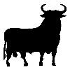 Bull1