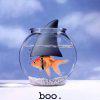 Boo! FishyShark