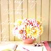 flowers- spring
