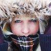 ajlis zima 2010