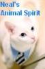 sentineljandb: Animal Spirit
