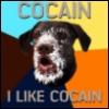 кокаино