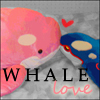 Pokemon - Whale Love