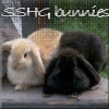 talesofsnape: Bunnies SS/HG